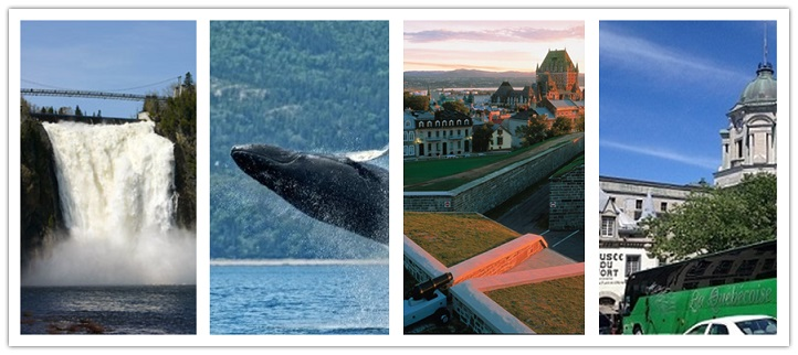 wonder travel|<p><strong>Day 1 Montreal-Whale Watching-Nature park</strong></p>  <p>We will leave at 6:15am in Montreal. It takes around 5 hours to drive to Rivi&egrave;re-du-Loup. Upon arrival, you will take a 4-hour <strong>whale watching cruise</strong>, which allows you to discover a unique whale refuge in the St-Lawrence River. A knowledgeable and experienced on-board guide will help you to identify different whale species: blue whales, humpback whales, fin whales, minke whales, dolphins, etc... You can understand their fascinating adaptability to the marine environment. After the cruise, we will visit a small native Indian village and a beautiful park. We will have very good time over there. At around 7:00pm, we will check in the hotel , and then you also have free time walk around this beautiful nature area.</p>  <p><strong>Day 2 St-Anne-Quebec</strong></p>  <p>We will leave the hotel &nbsp;around 7:00am. Then we will visit Mont Ste Anne region. Over there, we will visit Grand Canyon Ste Anne which is one of the most beautiful place in canada. It is a two thumbs up beautiful place. Do not miss it. You may also have chance to visit&nbsp;<strong>Cuivres d&#39;art Albert Gilles</strong>.We can discover the mysterious atmosphere of a copper mine, and the copper bearing rocks, the fine artefacts collected around the world.Also we will visit Seven Falls which is located between Quebec and Charlevoix.Then we will go to Montmorency Falls. At 83 meters high, it is the largest waterfalls in the Province of Quebec. We will take a sightseeing cable car&nbsp;to the top of the falls to admire the beauty and the magnificence of the St-Lawrence River and its surrounding areas. You can walk along the suspension bridge to feel the power of the falls. After buffet lunch, we will go to Quebec City, the oldest city in North America. We will stop at the Capital Observatory , the tallest building in the city. By going to the observation deck of 360 degree on the 31st floor, you will have a panoramic view of the capital. Afterwards you will have free time to visit the old Quebec City. As the only fortified city in North America, Quebec City has a history of more than 400 years. You will discover Quebec City from many different angles: politics, military, history, heritage, architecture and so much more. Then you can explore the Petit Champlain, the oldest commercial street in North America. &nbsp;After fully enjoying yourselves, you will leave back and arrive in Montreal around 8:30 pm.</p>  <p>&nbsp;</p>  <p><strong>Price includes:&nbsp;</strong>English/French speaking tour guide, transportation, Taxes, FICAV</p>  <p><strong>Price excludes:</strong><br /> * Service charge for driver &amp; guide: adults $14, Child (0-12) $10</p>  <p>* Entrance fees:</p>  <p>&nbsp; - Montmorency Falls: adults $3.0, child $3.0</p>  <p>&nbsp;- Cable car: adult $13.00, Child (6-12) $6.5</p>  <p>&nbsp;- Capital observation: adult $10, Child (0-11) free</p>  <p>&nbsp;- Cruise whale watching: adult $70+taxes, Child (6-16) $34+Taxes</p>  <p>&nbsp;- Grand Canyon: adult $13, Child (6-12) $7</p>  <p>* Travel insurance</p>  <p>* Meals</p>  <p><strong>Important sotice:</strong> In respect of the program, Wonder Travel reserves all rights to cancel or change the order of visit without notice depending on the customs formalities, weather and traffic, time changing or the closing day of tour sites, etc. The tickets prices and meals can be changed according to the season without notice.</p>  <p>Each room contains one or two double beds in all hotels in North America.&nbsp;</p>  <p><strong>Departure&nbsp;site:</strong> <strong>1242 Rue Stanely. Montreal (Metro Peel Exit St-Catherine)</strong></p>