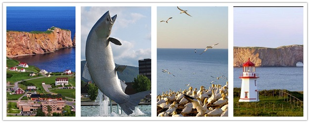 wonder travel|Gaspe, Perce & Bonaventure 3 Days $139.99/Q