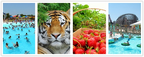 wondertravel|Granby Zoo & Fruit Picking 1 Día $19.99+